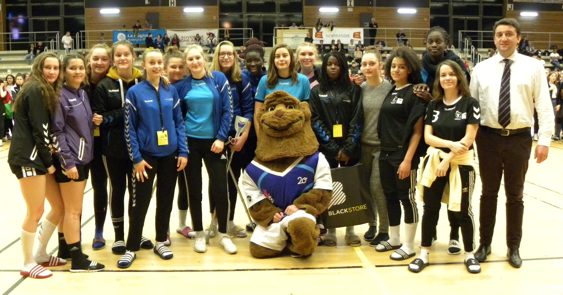 Classement handball normandie