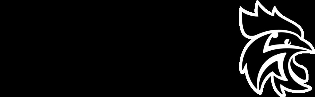 Logo FFHB noir